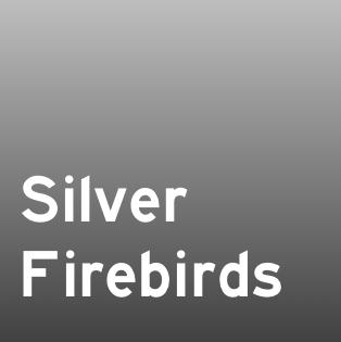 SIlver Firebirds