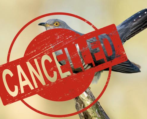 Cuckoo cancelled